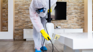 Photo of Where can I get affordable Pest control service in Melbourne