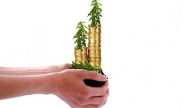 Photo of How to Grow Your Small Business with SME Loan