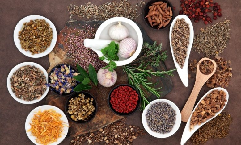 Herbal Treatment for Female Infertility – Natural Remedies