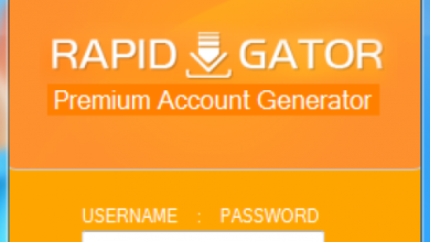Photo of What is rapidgator premium download?