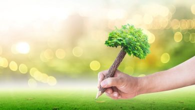 Photo of What role does ESG play in corporate strategy?