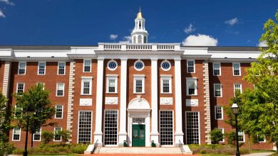 Photo of Top Best Universities in the World to Study From