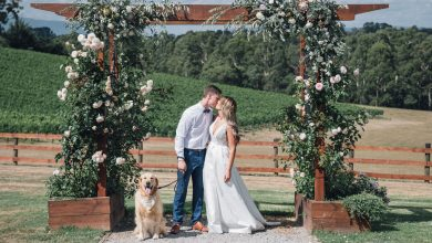 Photo of Unique Wedding Videography Melbourne Ideas That You Can Ask To The Professionals