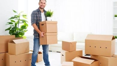 Photo of How To Move House Plants Long Distance