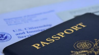 Photo of Rudraksh Immigration Summarizes The Steps To Ensure A Successful Visa Application!