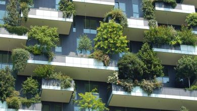 Photo of 5 Ways to be Green in your Condo and Building