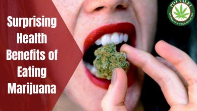 Photo of Surprising Health Benefits of Eating Marijuana